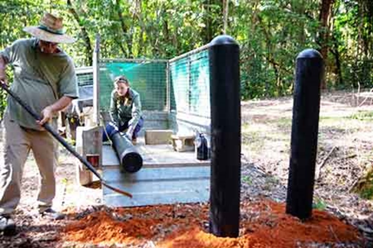 Protecting The Daintree Rainforest - With Recycled Tyres