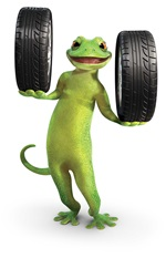 Gecko Hands with Tyres